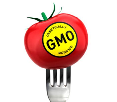 The AdvantagesBenefits of Genetically Modified Foods